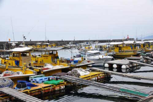 1漁港13.01.13
