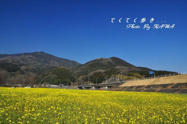 4五郎13.03.05