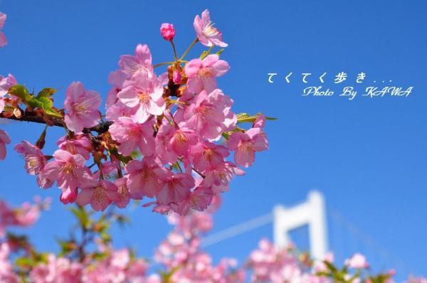1糸山13.03.11