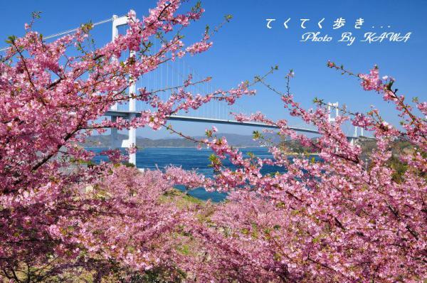 2糸山13.03.11