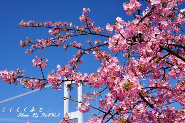 3糸山13.03.11