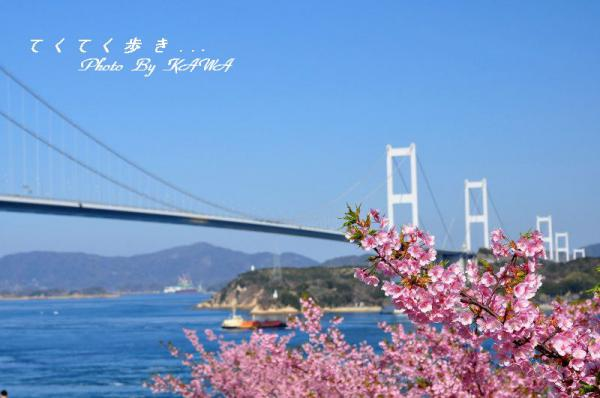 5糸山13.03.11