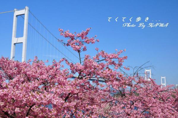 7糸山13.03.11