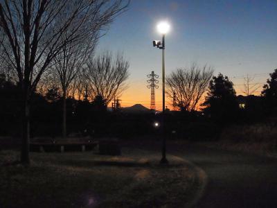 20110110_01.jpg