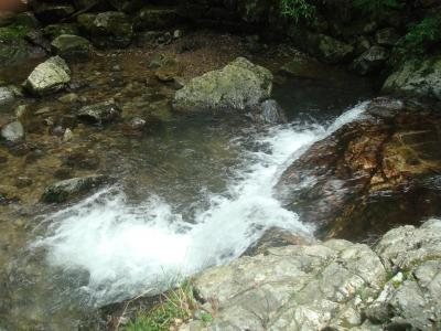 菅生の滝2DSC01314