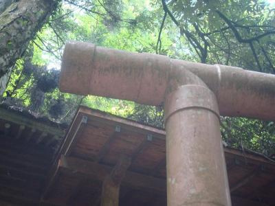 菅生の滝4DSC01317