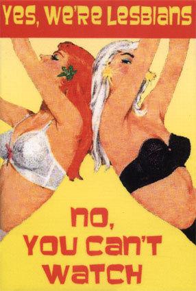 yes-we-re-lesbians-lesbian-culture-900751_286_425.jpg