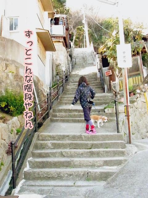 0125尾道、魔の階段