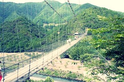 谷瀬の吊り橋_1