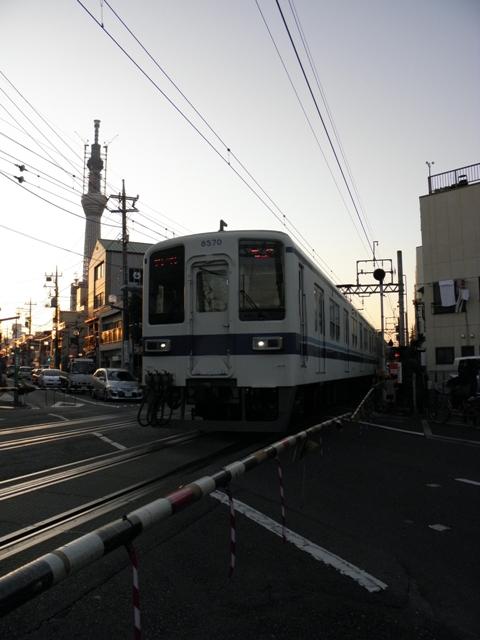 P1210234.jpg