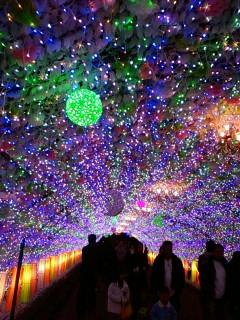 11/26 御殿場イルミネーション光の回廊
