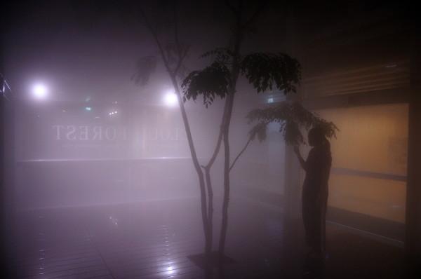 情報芸術センター夜 028