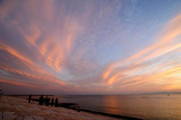 焼野海岸 089