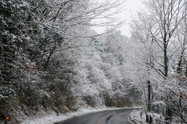 阿東町雪景色 021