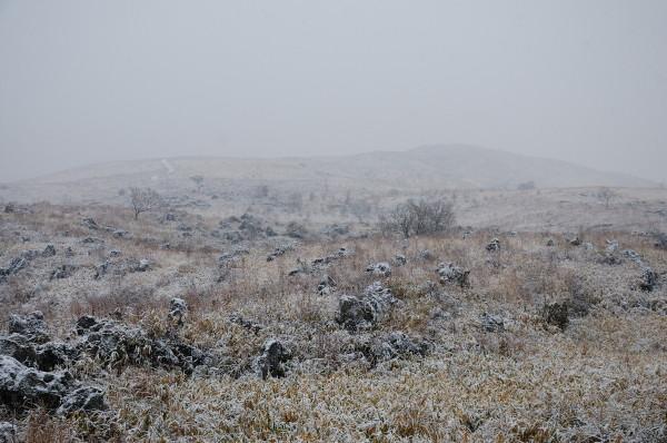 阿東町雪景色 014