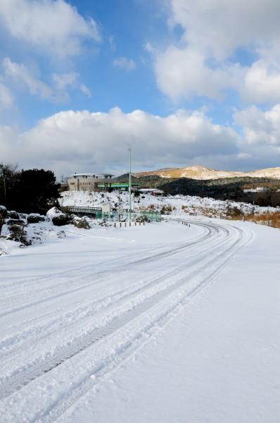 雪の秋吉台 019