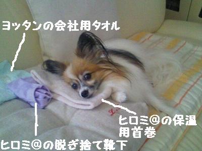 2011092309320000.jpg
