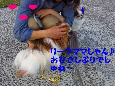 2012060318470000.jpg