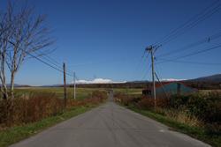 牧場へ行く道