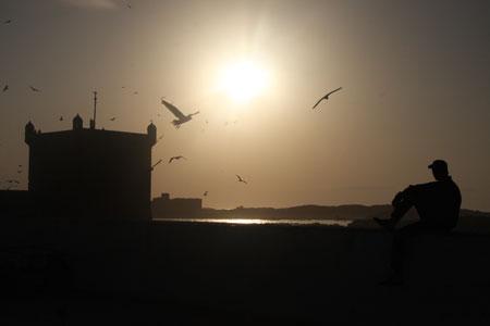 おじさんとカモメと夕日と