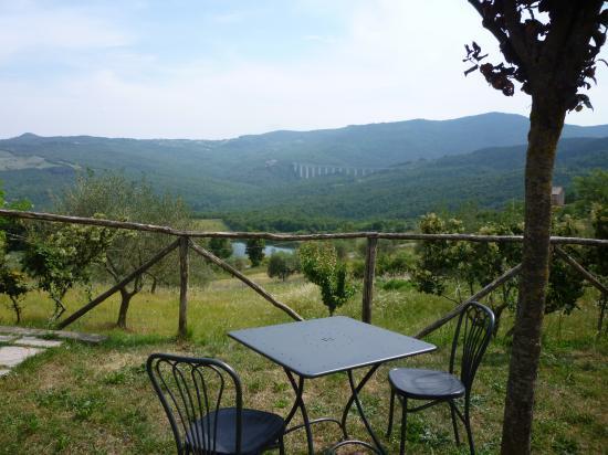 estate in Toscana6