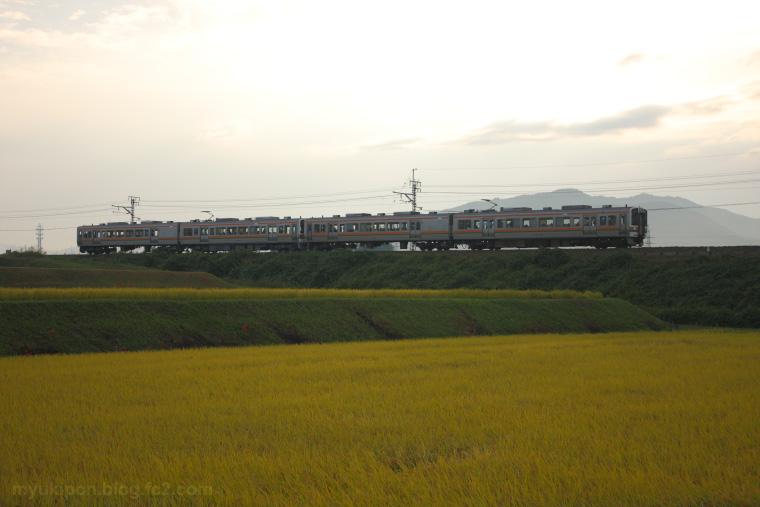 2012100901.jpg