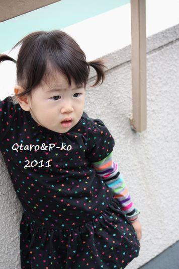 IMG_1499_20111024192719.jpg