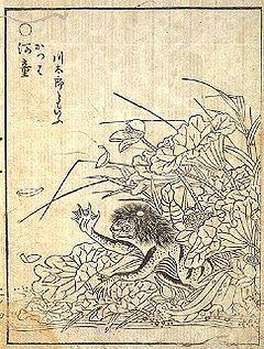240px-Kappa_jap_myth.jpg