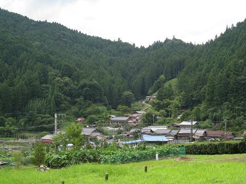 のどかな村7.31