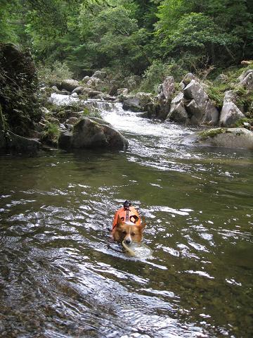 川の水が多いね8.7