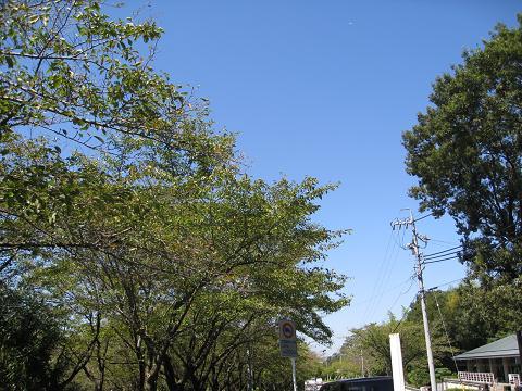 平和公園9.7