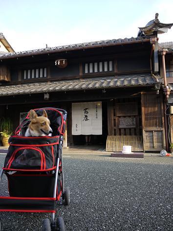 小坂酒造場10.9