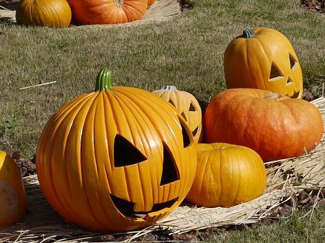 おばけかぼちゃ10.18