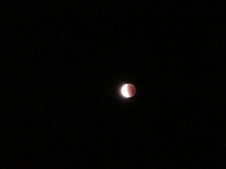 皆既月食12.11