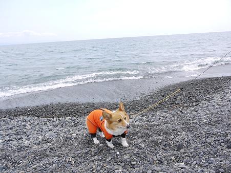 海は苦手5.13