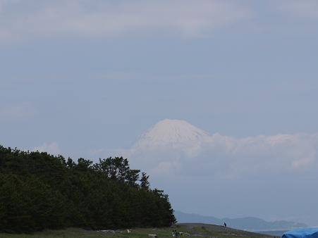 三保の松原からみた富士山5.13
