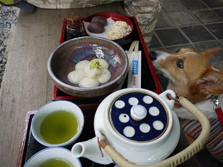 安倍川餅と辛みもち5.13