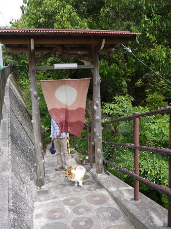 滝カフェ入り口5.20