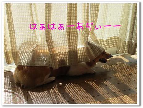 UmcTkkktfho3RRo_1348636206.jpg