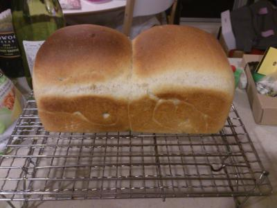 1216パン