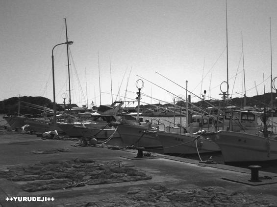 yurudeji_漁港4