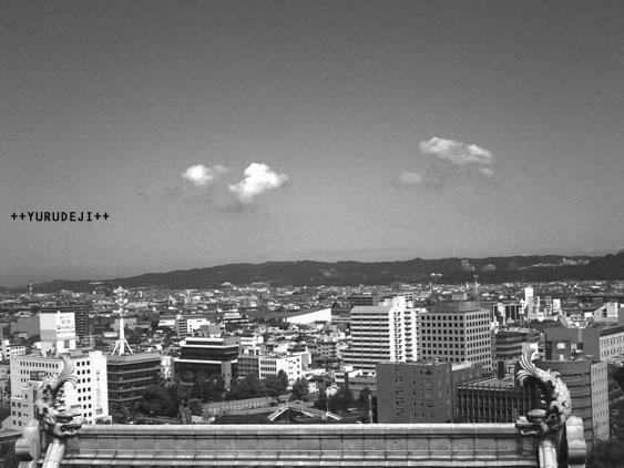 yurudeji_鯱と和歌山市