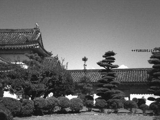 yurudeji_和歌山城a