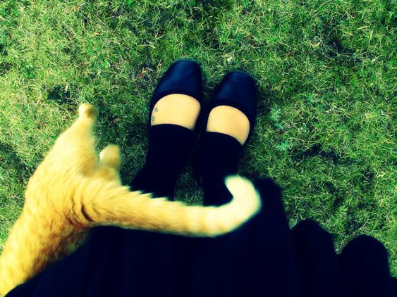 yurudeji_猫+私