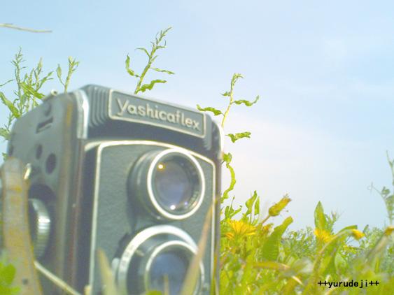 yurudeji_yashikaflex.jpg