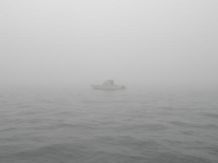 20110702)霧