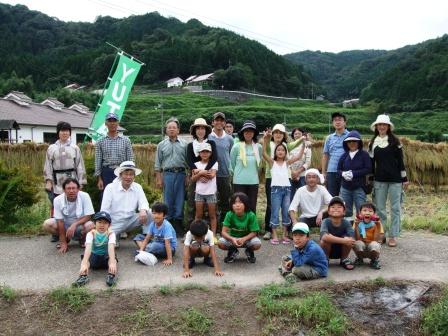 稲刈り体験-17