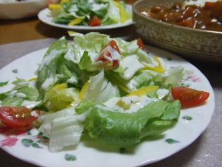 晩御飯カレー&サラダ