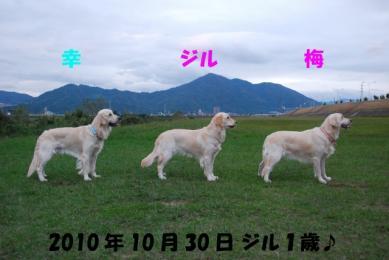 640_DSC_5925.jpg