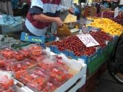 market8.jpg